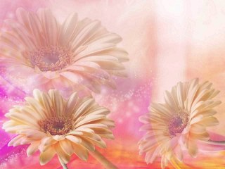 ... FOTOGRAFIA: wallpapers flowers,fondos flores colores pasteles