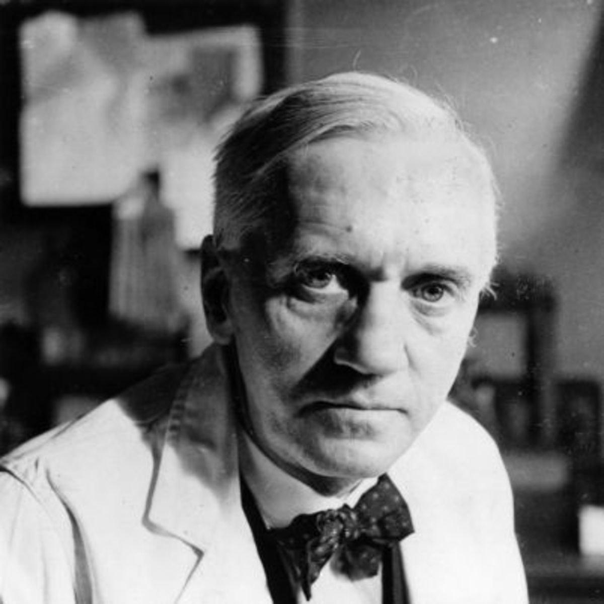 6 de Agosto - Alexander Fleming, cientista e médico bacteriologista britânico, descobridor da penicilina.jpg (Moderado)